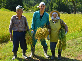 お米生産者の皆さま